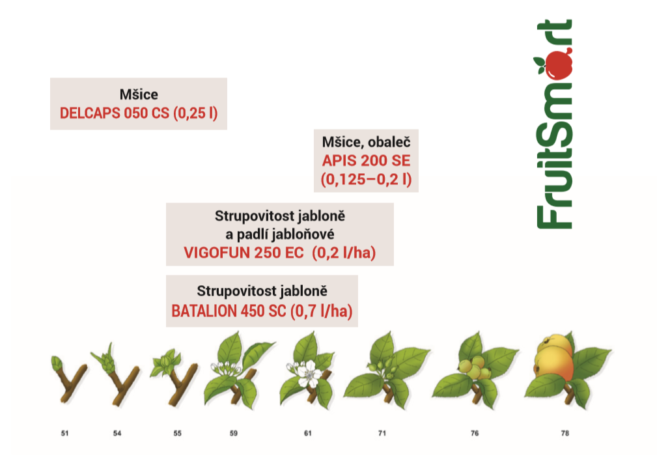 Apples_recomend