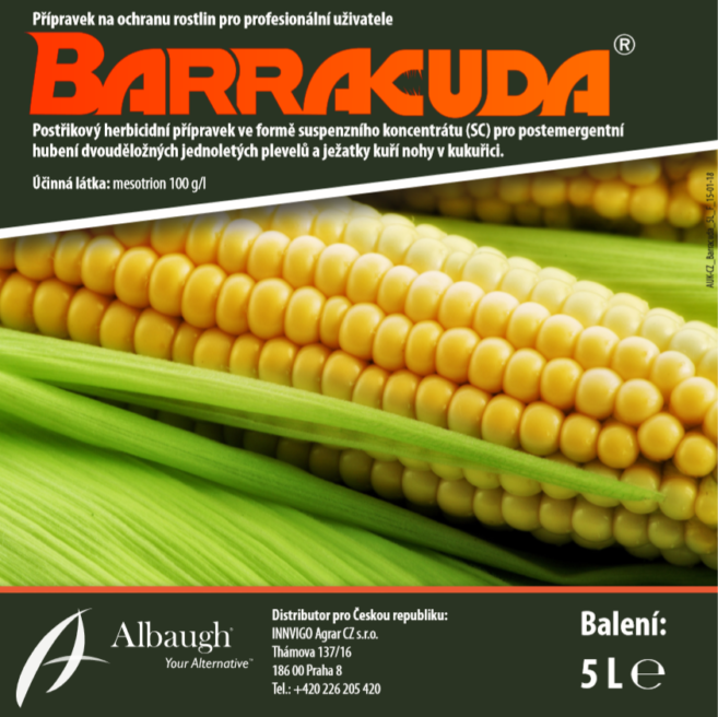 Barracuda_pict